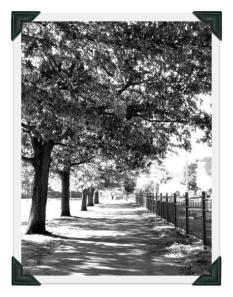 Brooklawn Parkblack and whiteboost50photo cornersjpg